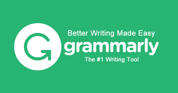 grammarly | a tool for content writing tips for beginners