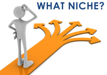 write an article - what niche?