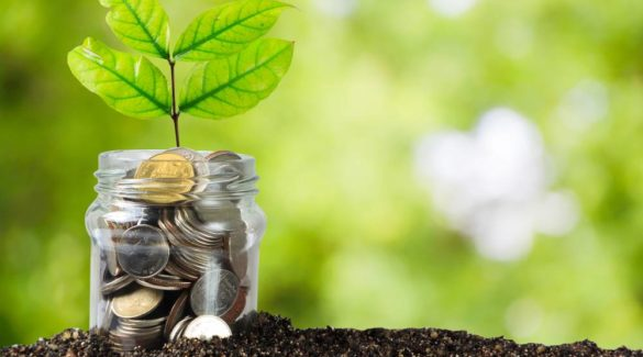 Voluntary Provident Fund (VPF): Everything You Need To Know